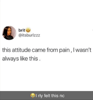 No you just have a bad attitude: brit  @itsburlzzz  this attitude came from pain ,I wasn't  always like this.  I rly felt this nc No you just have a bad attitude