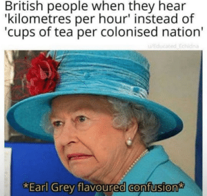 meirl: British people when they hear  'kilometres per hour' instead of  'cups of tea per colonised nation'  u/Educated Echidna  *Earl Grey flavoured confusion meirl