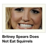 Britney Spears, Target, and Tumblr: Britney Spears Does  Not Eat Squirrels godpenis:  SOURCE??????