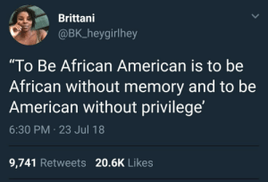 "Dank, Memes, and Target: Brittani  @BK heygirlhey  ""To Be African American is to be  African without memory and to be  American without privilege  6:30 PM 23 Jul 18  9,741 Retweets 20.6K Likes Living on land long forgotten by silverwolfer FOLLOW HERE 4 MORE MEMES."