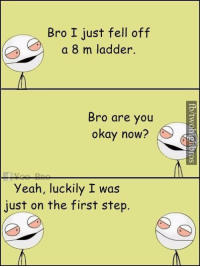 Memes, Yeah, and Okay: Bro I just fell off  a 8 m ladder.  Bro are you  okay now?  Yeah, luckily I was  just on the first step