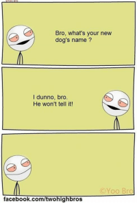 Yoo Bro: Bro, what's your new  dog's name?  l dunno, bro  He won't tell it!  (C Yoo Bro  facebook.com/twohig  ros
