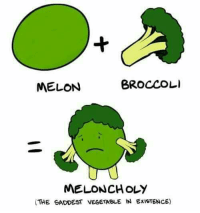 Memes, 🤖, and Broccoli: BROCCOLI  MELON  MELONCHOLY  (THE SADDEST VEGETABLE IN ExisTENCE)