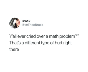 Brock: Brock  @ImTheeBrock  Y'all ever cried over a math problem??  That's a different type of hurt right  there