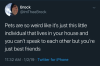 Friends, Iphone, and Tumblr: Brock  @lmTheeBrock  Pets are so weird like it's just this little  individual that lives in your house and  you can't speak to each other but you're  just best friends  11:32 AM 1/2/19 Twitter for iPhone awesomacious:  Pets are nice