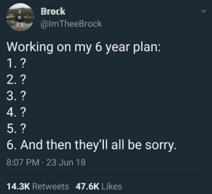 Sorry, Brock, and MeIRL: Brock  @lmTheeBrock  Working on my 6 year plan:  6. And then they'Il all be sorry  8:07 PM 23 Jun 18  14.3K Retweets 47.6K Likes meirl