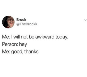 meirl: Brock  @TheBrockk  Me: I will not be awkward today.  Person: hey  Me: good, thanks meirl