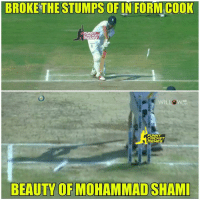 Mohammad shami you beauty   Credits : Funny cricket memes: BROKETHESTUMPS OF IN FORMCOOK  CRICKET  IMEMES  FUNNY  CRICKET  ME  BEAUTY OF MOHAMMAD SHAMI Mohammad shami you beauty   Credits : Funny cricket memes