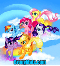 Share if you love this.  Meet Bronies on BronyMate.com.: Broni Mate Comm Share if you love this.  Meet Bronies on BronyMate.com.