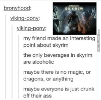 This explains so much..: bronyhood  SKY RIM  On  vikin  On  A  my friend made an interesting  point about skyrim  the only beverages in skyrim  are alcoholic  maybe there is no magic, or  dragons, or anything  maybe everyone is just drunk  off their ass This explains so much..