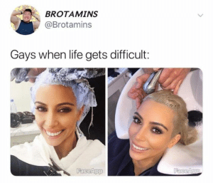 Life, Memes, and 🤖: BROTAMINS  @Brotamins  Gays when life gets difficult:  FaceApp  FaceApp dead