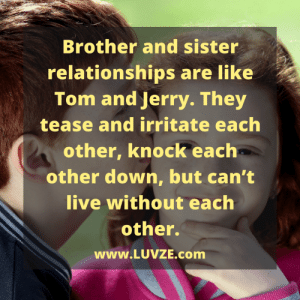 New Brother Sister Quotes Memes | Even Memes, Sister Quotes ...