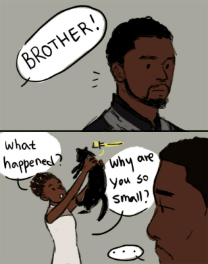 Tumblr, Black, and Black Panther: BROTHER  what  LF  happenet?  why  hu are  Small) cassiebones: stormtrooper3326: little black panther doodle okay but Shuri actually adopting a black cat she found in Oakland and naming it T-Challa and calling her brother Human T'Challa