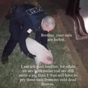 Monsanto Has Farmer Arrested For Saving Seeds (circa. 2014): Brother, your oats  are forfeit.  I am not your brother, for while  we are both swine you are still  more a pig than I. You will have to  pry these oats from my cold dead  hooves Monsanto Has Farmer Arrested For Saving Seeds (circa. 2014)