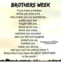 Memes, 🤖, and Succeed: BROTHERS WEEK  If you have a brother,  whom you love a lot  who made you cry sometimes  pulled your hair  fought with you  stood up for you...  drove you crazy  watched you succeed  saw you fail and laughed,  picked you up,  Awesome Quotes  scolded you  www.Awesomequotes4u.com  made you strong  and you can't do without them  Share this if you have the BEST BROTHER  in the world