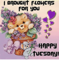 tuesday: BROUGHT FLOWERS  FOR YOU  HAPPy  tUESDAy!