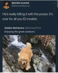 Funny, Goals, and Grandma: BROWN SUGAR  @korenarebecca  He's really killing it with the poses. It's  over for all you IG models  Golden Retrievers @RetrieverPics  Enjoying the great outdoors That last pose made me say YUUUH!! I accidentally on purpose woke up my dead grandma.. this me if I reincarnated into a dog @larnite • ➫➫➫ Follow @Staggering for more funny posts daily! • (Ignore: memes like4like funny music love comedy goals fortnite)