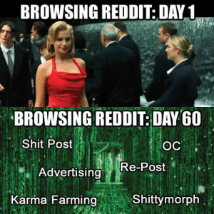 This pretty much sums up my experience with reddit so far.: BROWSING REDDIT: DAY1  BROWSING REDDIT: DAY G0  Shit Post  Re-Post  Advertising  Karma Farming  Shittymorph This pretty much sums up my experience with reddit so far.