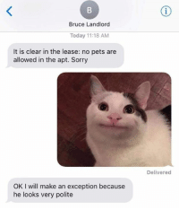 Dank, Sorry, and Pets: Bruce Landlord  Today 11:18 AM  It is clear in the lease: no pets are  allowed in the apt. Sorry  Delivered  OK I will make an exception because  he looks very polite Who could say no to that face