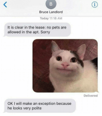 Sorry, Pets, and Today: Bruce Landlord  Today 11:18 AM  It is clear in the lease: no pets are  allowed in the apt. Sorry  Delivered  OK I will make an exception because  he looks very polite