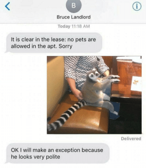 Sorry, Pets, and Today: Bruce Landlord  Today 11:18 AM  It is clear in the lease: no pets are  allowed in the apt. Sorry  Delivered  OK I will make an exception because  he looks very polite Me_irl