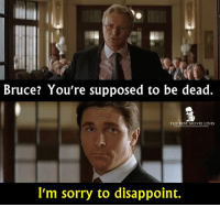 Disappointed, Memes, and Batman Begins: Bruce? You're supposed to be dead.  THE BEST MOVIE LINES  I'm sorry to disappoint. - Batman Begins 2005