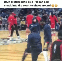 Savage clip of the day lol: Bruh pretended to be a Pelican and  snuck into the court to shoot around Ee Savage clip of the day lol