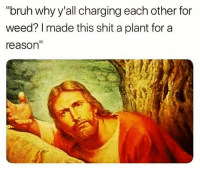 "Bruh, Memes, and Shit: ""bruh why y'all charging each other for  weed? I made this shit a plant for a  reason @stonerjoke Is The Best Stoner Comedy Page On IG💯 Follow For The Funniest Stoner Memes And Videos! @stonerjoke @stonerjoke"
