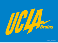 Bruins  NFL MEMES Chargers changed the colors of their logo? In that case...
