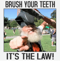 Brush your Teeth It's The Law!: BRUSH YOUR TEETH  IT'S THE LAW! Brush your Teeth It's The Law!