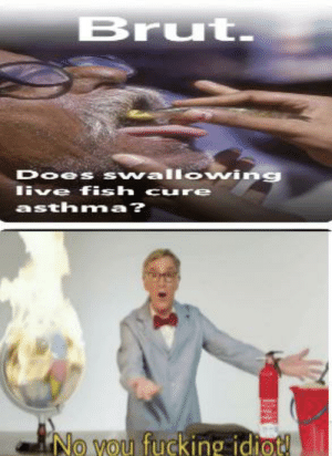 Fucking, Snapchat, and Asthma: Brut.  Does swallowing  live fish cure  asthma?  No you fucking idiot! What even is Snapchat