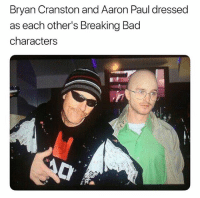 Bad, Breaking Bad, and Bryan Cranston: Bryan Cranston and Aaron Paul dressed  as each other's Breaking Bad  characters Aaron Paul looks like a socially secluded middle aged techie & Bryan Cranston looks he sells cigarettes at a ski resort