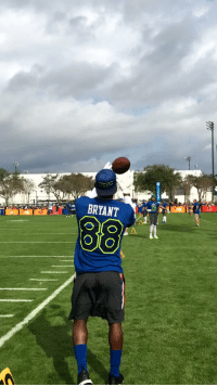 Memes, 🤖, and Trading: BRYANT  88 .@DezBryant: Jack of all trades. ProBowl