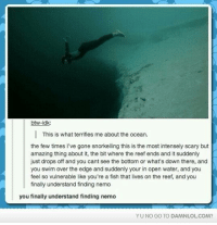 Memes, 🤖, and Gone: btw-idk:  This is what terrifies me about the ocean.  the few times I've gone snorkelling this is the most intensely scary but  amazing thing about it, the bit where the reef ends and it suddenly  just drops off and you cant see the bottom or what's down there, and  you swim over the edge and suddenly your in open water, and you  feel so vulnerable like you're a fish that lives on the reef, and you  finally understand finding nemo  you finally understand finding nemo  YU NO GO TO DAMNLOLCOM?