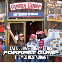 Shrimp soup, shrimp burger, shrimp salad and a shrimp RESTAURANT. Forrest Gump fans will love this... 🍤: BUBBA GUMP  RUN  FORREST  RUN  RESTADRANT UPSTAIRS  TUDIO  EAT BUBBA SHRIMP AT TH  FORREST GOMP  THEMED RESTAURANT Shrimp soup, shrimp burger, shrimp salad and a shrimp RESTAURANT. Forrest Gump fans will love this... 🍤