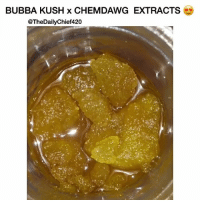 Bubba, Memes, and Cannabis: BUBBA KUSH x CHEMDAWG EXTRACTS  @TheDailyChief420 HCFSE can be one of the most potent forms of cannabis concentrates. 🤤 - 🎥: @steady.globbin - @TheDailyChief420