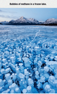 epicjohndoe:  Frozen Lake Beauty: Bubbles of methane in a frozen lake epicjohndoe:  Frozen Lake Beauty