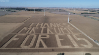 "Memes, Indiana, and Trump: Buchanan Farms Secretary Sonny Perdue posted this photo from Buchanan Farms in Indiana. From high above the field the photo reads, ""Thanks Mr Trump for E15,"" referring to new ethanol rules."