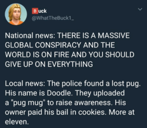 "Cookies, Fire, and News: Buck  @WhatTheBuck1_  National news: THERE IS A MASSIVE  GLOBAL CONSPIRACY AND THE  WORLD IS ON FIRE AND YOU SHOULD  GIVE UP ON EVERYTHING  Local news: The police found a lost pug.  His name is Doodle. They uploaded  a ""pug mug"" to raise awareness. His  owner paid his bail in cookies. More at  eleven."