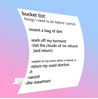 Bucket List, Meme, and Doritos: bucket list.  things I need to do before I perish  invent a bag of dirt  -wash off my tormenft  -visit the clouds of no return  (and return)  explain to my mum what a meme is  -return my used doritos  -h  vanish  -the meatman