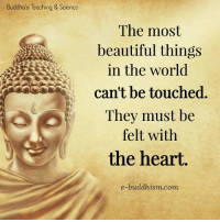 Beautiful, Memes, and Heart: Buddha's Teoching & Science  The most  beautiful things  in the world  can't be touched  They must be  felt with  the heart  e-buddhism com