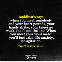 Memes, Anxiety, and 🤖: Buddhist's says  when you meet somebody  and your heart pounds, your  hands shake, your knees go  weak, that's not the one.  When  you meet your soul mate'  you'll feel calm. No anxiety,  no agitation.  Type 'Yes' if you agree  Lessons Taught  By LIFE <3