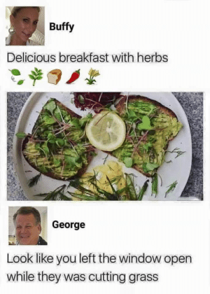 hi, im vegan. via /r/memes https://ift.tt/2yvR4JT: Buffy  Delicious breakfast with herbs  George  Look like you left the window open  while they was cutting grass hi, im vegan. via /r/memes https://ift.tt/2yvR4JT