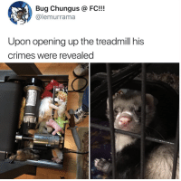 Treadmill, Bug, and Question: Bug Chungus FC!!!  @lemurrama  Upon opening up the treadmill his  crimes were revealed  0) Question at the bottomless
