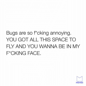 I hate bugs.: Bugs are so f*cking annoying  YOU GOT ALL THIS SPACE TO  FLY AND YOU WANNA BE IN MY  F*CKING FACE.  MEMES I hate bugs.