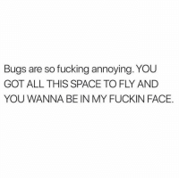 Fucking, Space, and Truth: Bugs are so fucking annoying. YOU  GOT ALL THIS SPACE TO FLY AND  YOU WANNA BE IN MY FUCKIN FACE If this isn't the truth...💯 https://t.co/W54QWViZoD