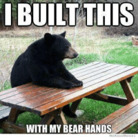 We Know Meme: BUILT THIS  WITH MY BEAR HANDS  We Know Meme
