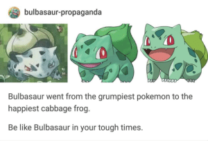 Be Like, Bulbasaur, and Pokemon: bulbasaur-propaganda  0  Bulbasaur went from the grumpiest pokemon to the  happiest cabbage frog.  Be like Bulbasaur in your tough times. Wholesome Bulbasaur