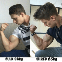Bulk or shred? (@gym.starz) - - Please DM for credit: BULK 96kg  SHRED 85kg Bulk or shred? (@gym.starz) - - Please DM for credit