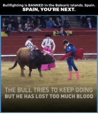 What are your thoughts on bullfighting? 🤔🤔🤔 @pmwhiphop @pmwhiphop: Bullfighting is BANNED in the Balearic Islands, Spain.  SPAIN, YOU'RE NEXT.  THE BULL TRIES TO KEEP GOING  BUT HE HAS LOST TOO MUCH BLOOD What are your thoughts on bullfighting? 🤔🤔🤔 @pmwhiphop @pmwhiphop